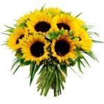 Digitaal bloemetje en schema´s 4 t/m 10 mei
